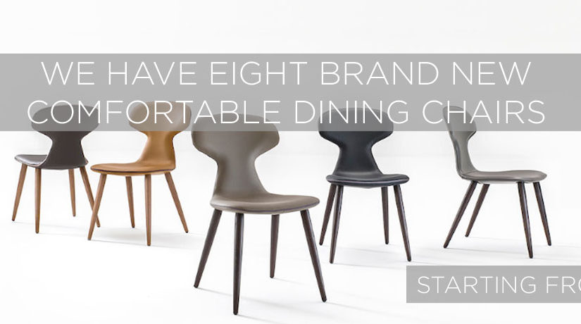 Sophisticated and Comfortable Dining Chairs